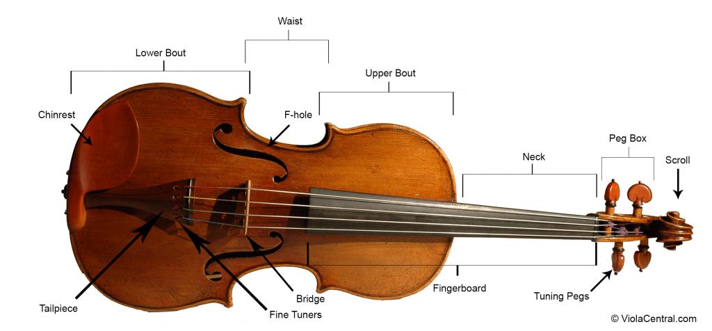parts-of-viola-1024x476 What Is a Viola?