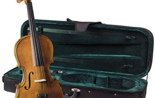 Cremona-SVA-150-Premier-Student-Viola-Outfit-15-Size-Boxwood-Fittings-Aging-Toner-Prelude-Strings-Deluxe-Case-0-320x202 Blog