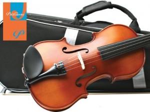 51R5pcta1FL1-300x225 Best Viola Brands Review 2021 Product Reviews Reviews